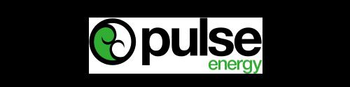PUNZ Logo